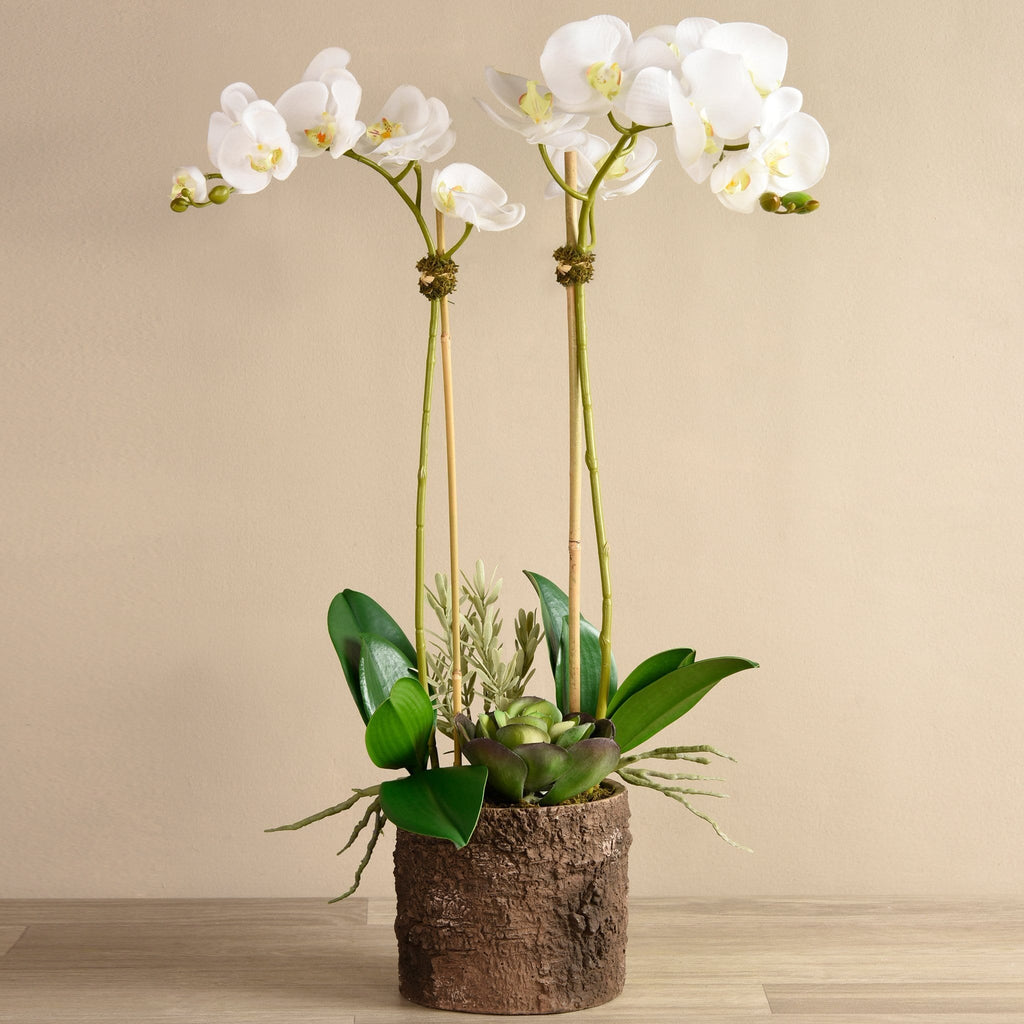 Big Sur Artificial Orchid Arrangement Bloomr Artificial Flowers & Artificial Trees
