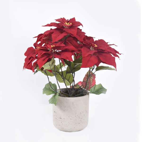 Poinsettia in Concrete Pot Bloomr Artificial Flowers & Artificial Trees