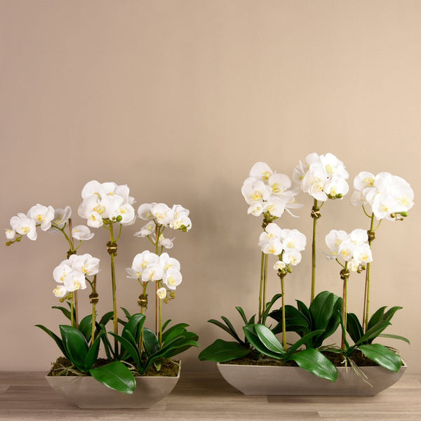 Contemporary Orchid Arrangement Bloomr Home Artificial Flowers and Trees