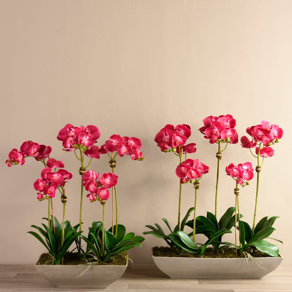 Contemporary Artificial Orchid Arrangement Bloomr Artificial Flowers & Artificial Trees