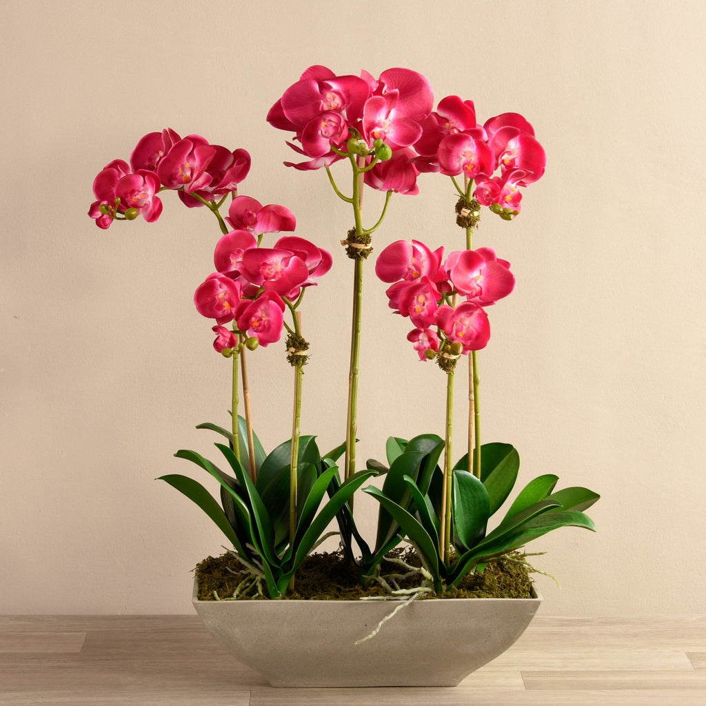 Contemporary Orchid Arrangement Bloomr Artificial Flowers & Artificial Trees