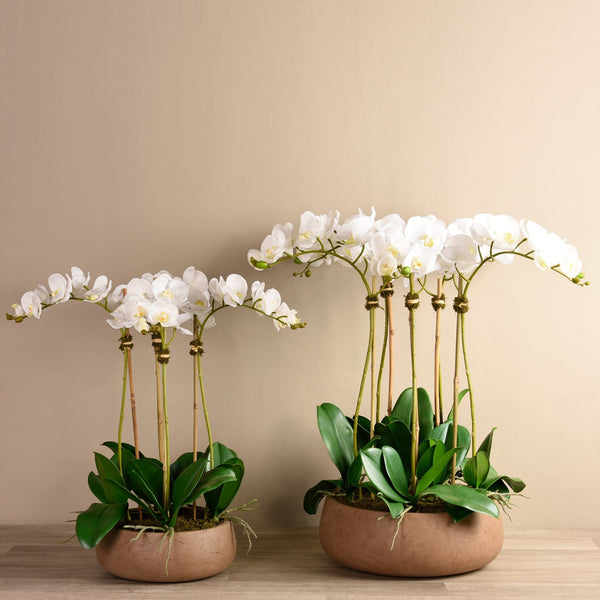 Oasis Orchid Arrangement Bloomr Artificial Flowers & Artificial Trees