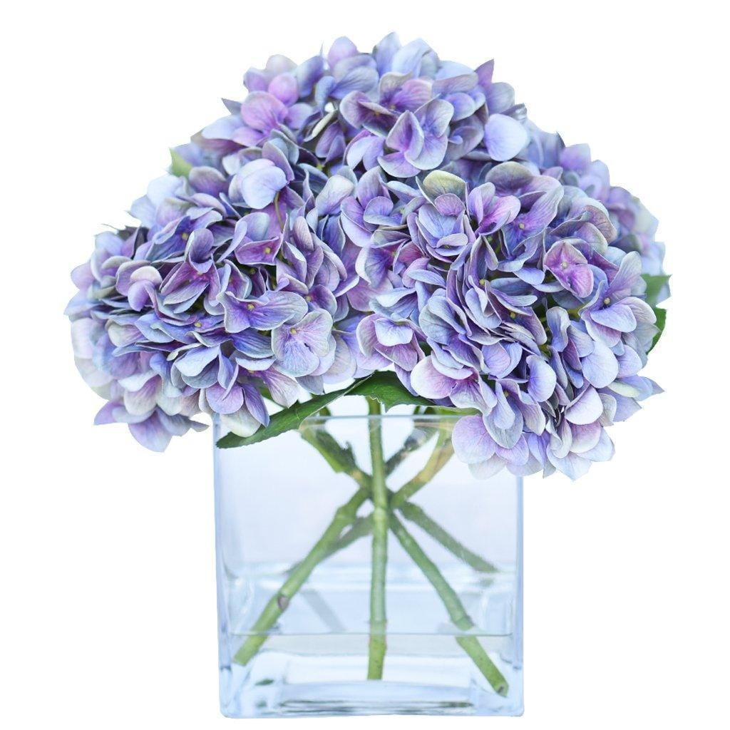 hydrangeas in a glass square