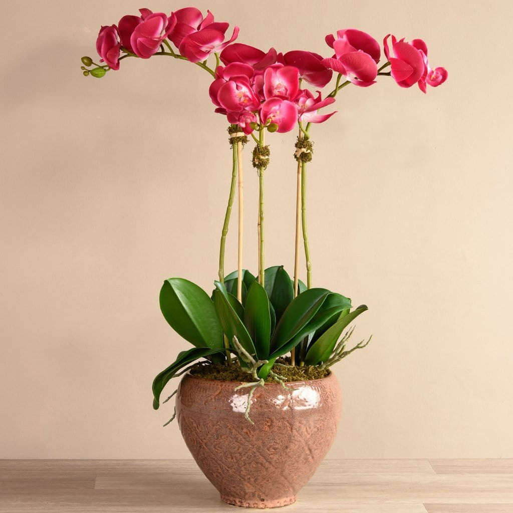 Artificial Orchid in Terra-Cotta Pot Bloomr Artificial Flowers & Artificial Trees