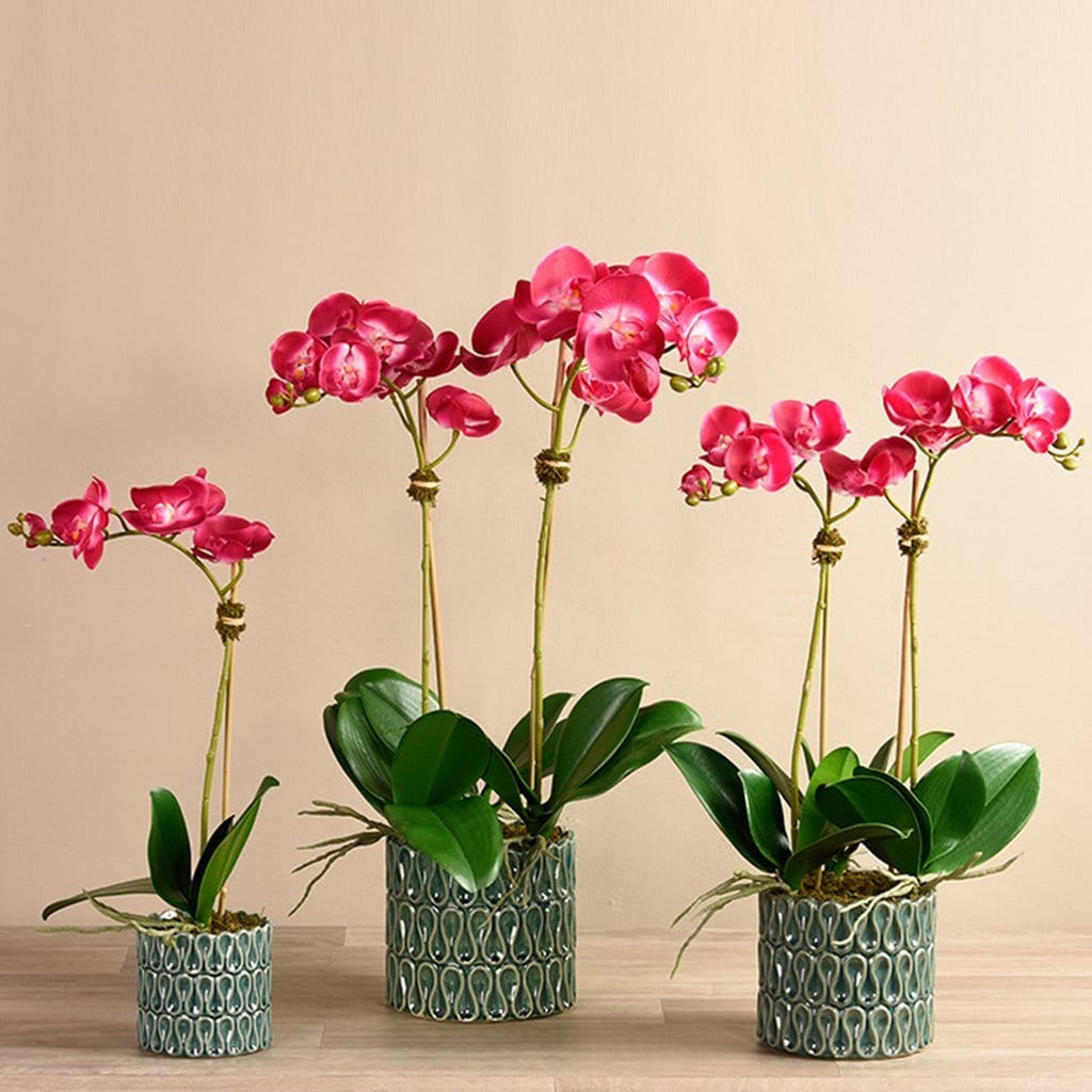 Casual Orchid Arrangement Bloomr Home Artificial Flowers and Trees