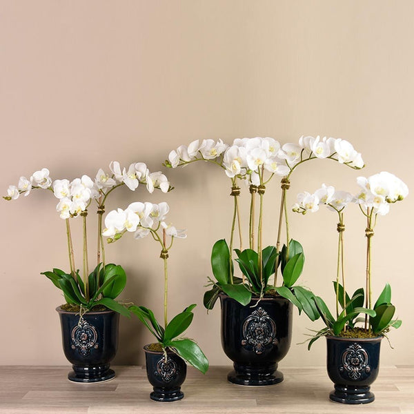 Artificial Orchid Arrangement in Black Ceramic Pot Bloomr Artificial Flowers & Artificial Trees