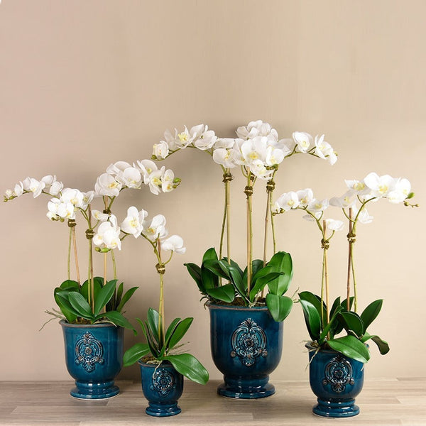 Artificial Orchid Arrangement in Teal Ceramic Pot Bloomr Artificial Flowers & Artificial Trees