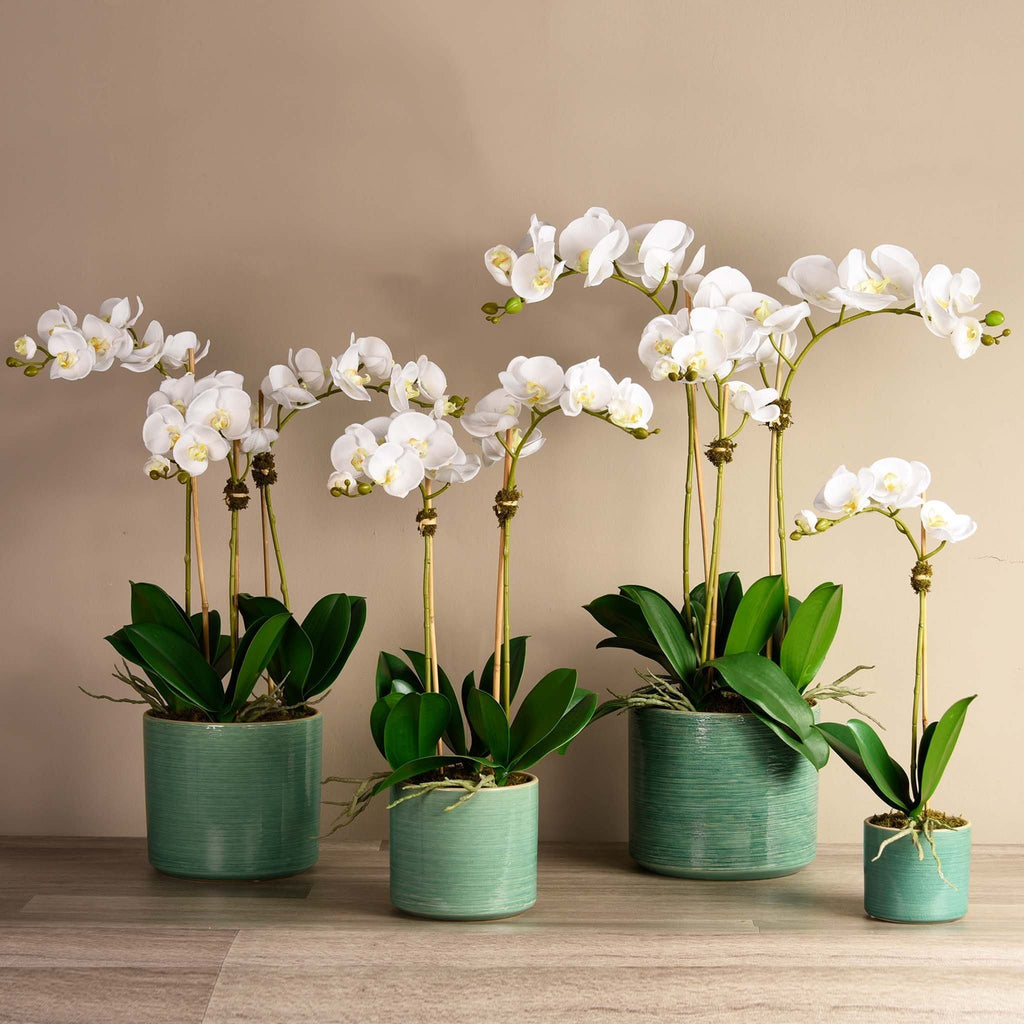 Placid Orchid Arrangement Bloomr Artificial Flowers & Artificial Trees