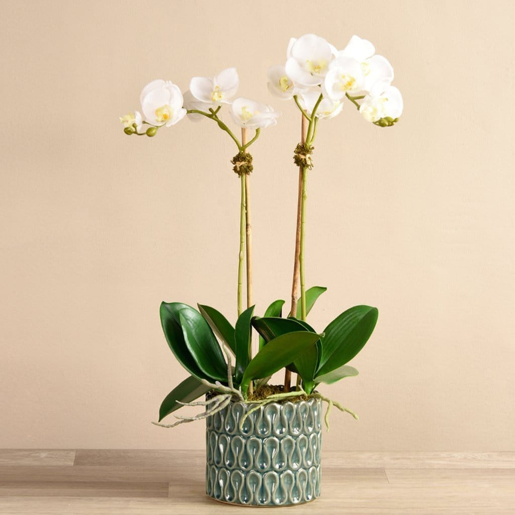 Bayside Artificial Orchid Arrangement in Green Pot Bloomr Artificial Flowers & Artificial Trees