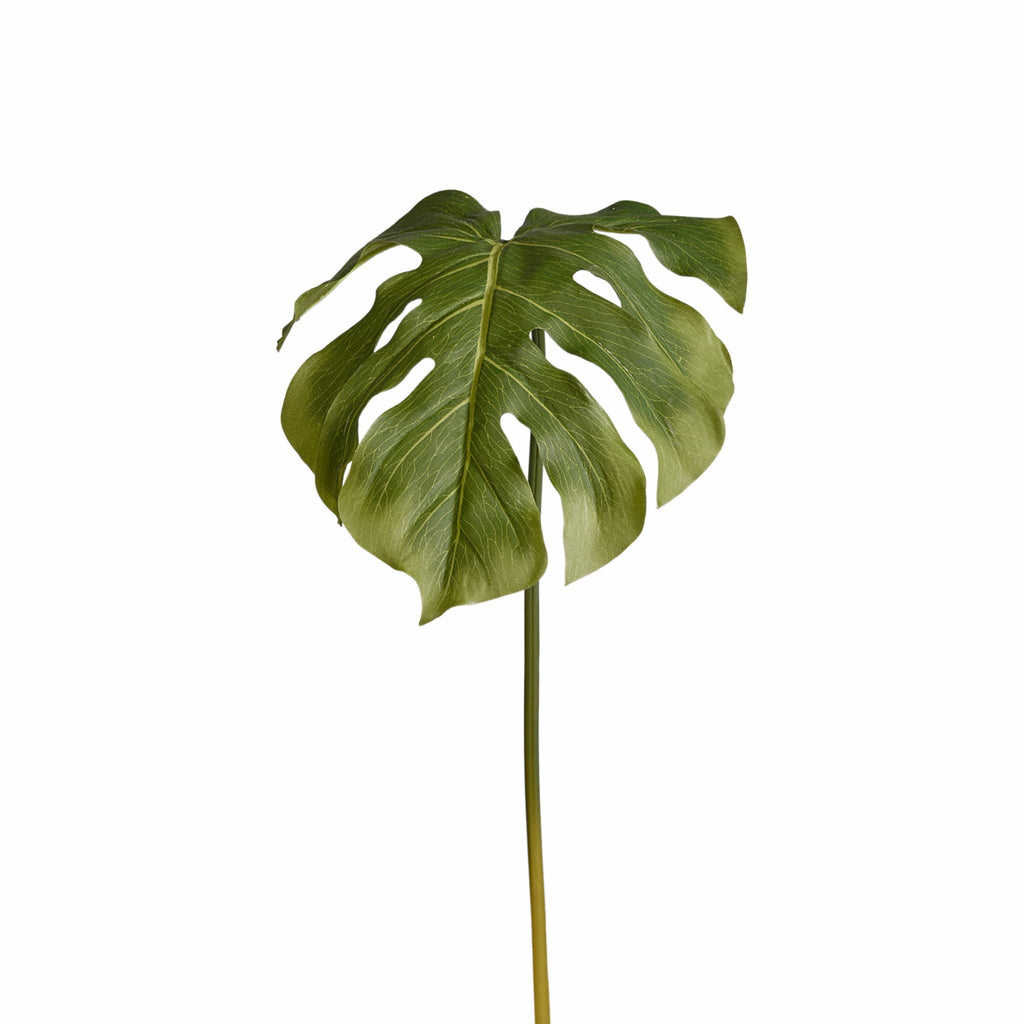 Monstera Leaf Bloomr Artificial Flowers & Artificial Trees