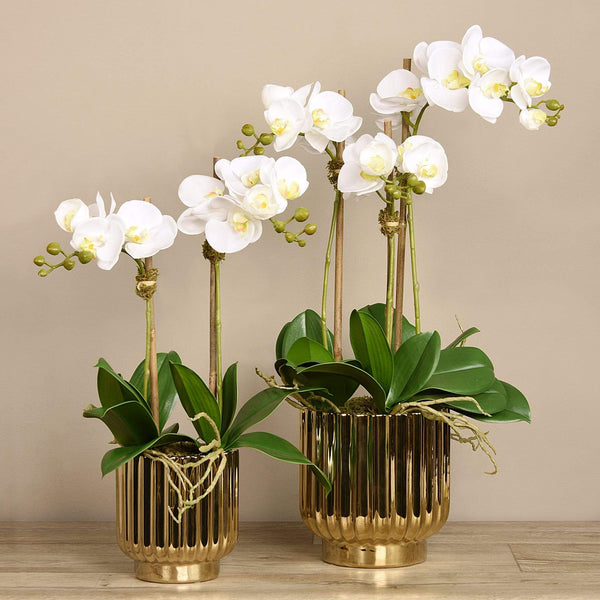 Artificial Orchid Arrangement - Bloomr
