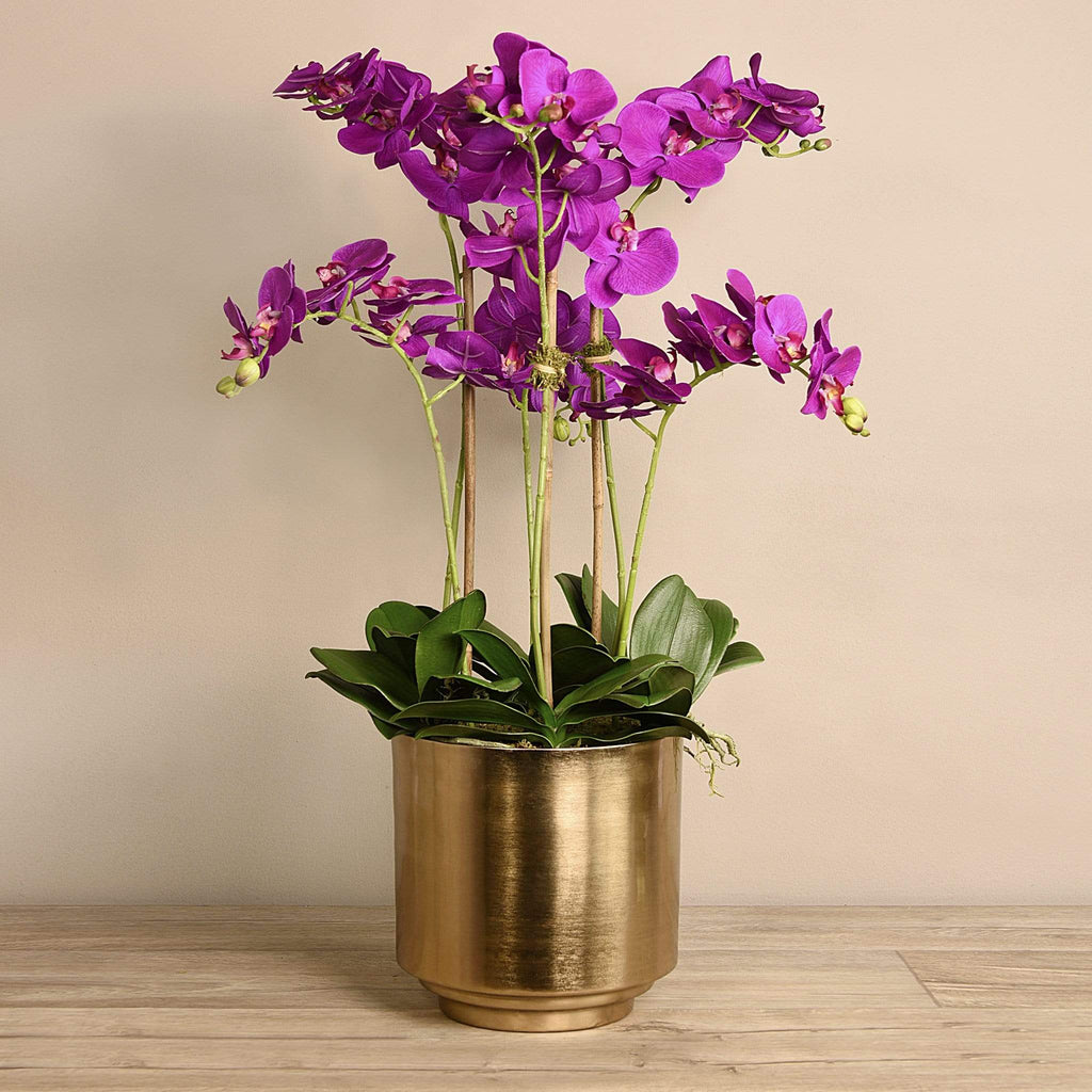 Artificial Orchid in Gold Vase Bloomr Artificial Flowers & Artificial Trees