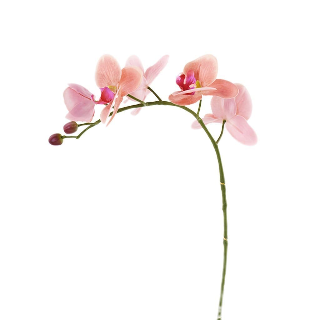 Orchid Stem Bloomr Artificial Flowers & Artificial Trees