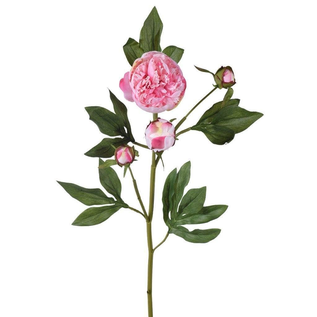 Peony Bloomr Artificial Flowers & Artificial Trees