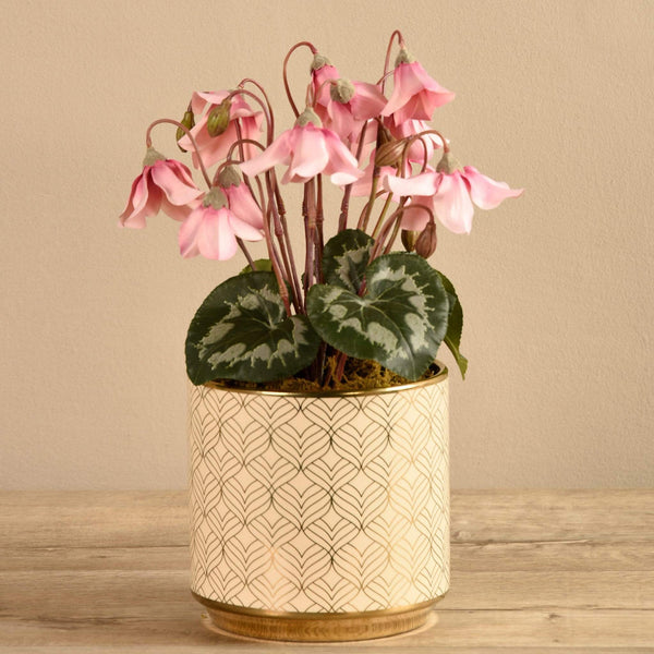 Artificial Potted Cyclamen - Bloomr