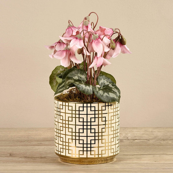 Potted Cyclamen Bloomr Artificial Flowers & Artificial Trees