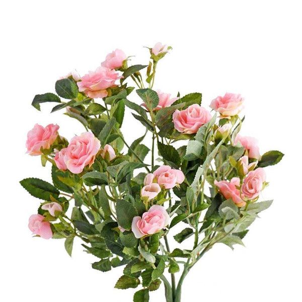 a clump of pink roses