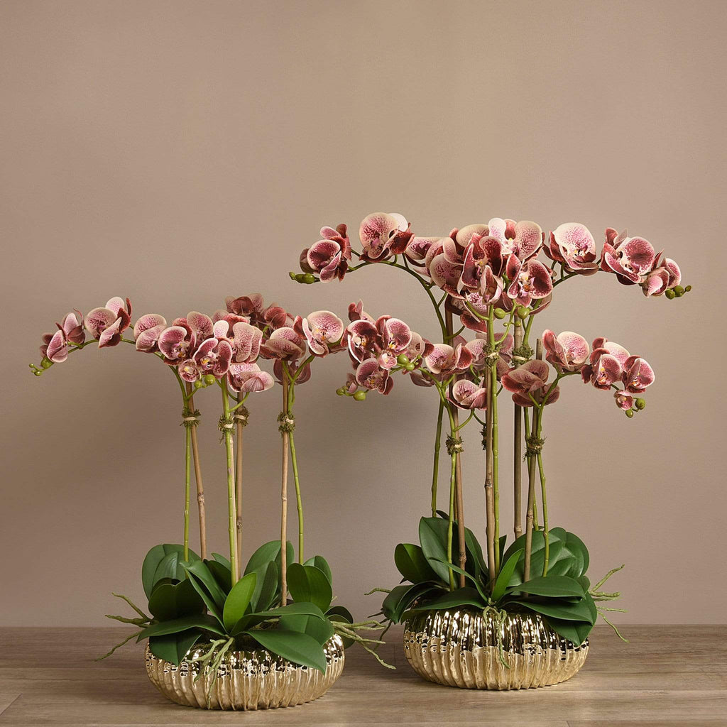 Royal Artificial Orchid Arrangement Bloomr Artificial Flowers & Artificial Trees