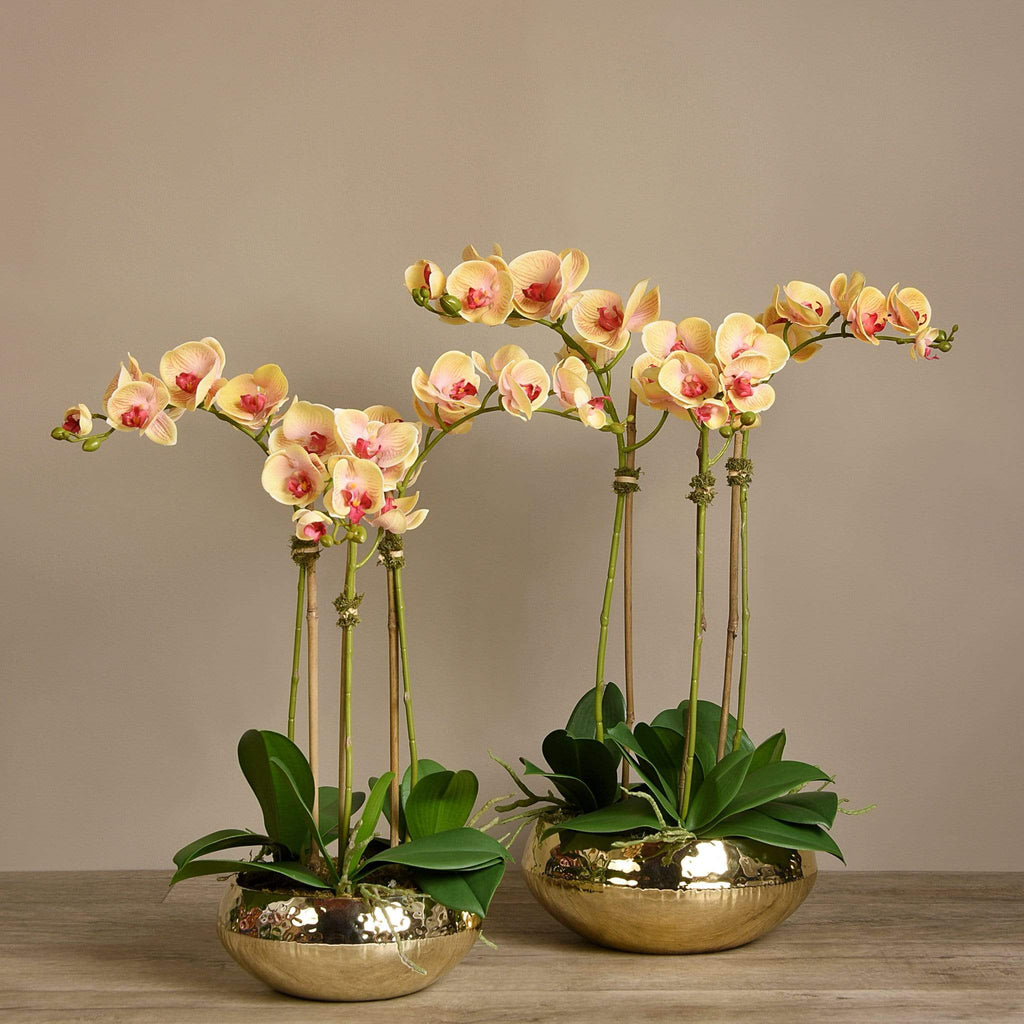 Shining Artificial Orchid Arrangement