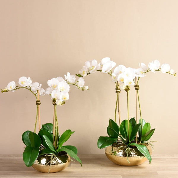 Chic Orchid Arrangement Bloomr Home Artificial Flowers and Trees