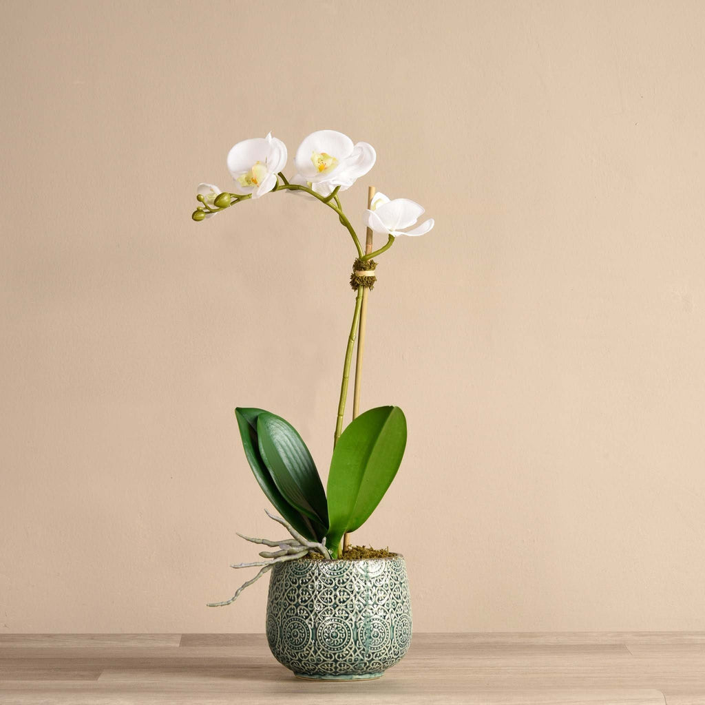 Marrakech Artificial Orchid in Green Pot Bloomr Artificial Flowers & Artificial Trees