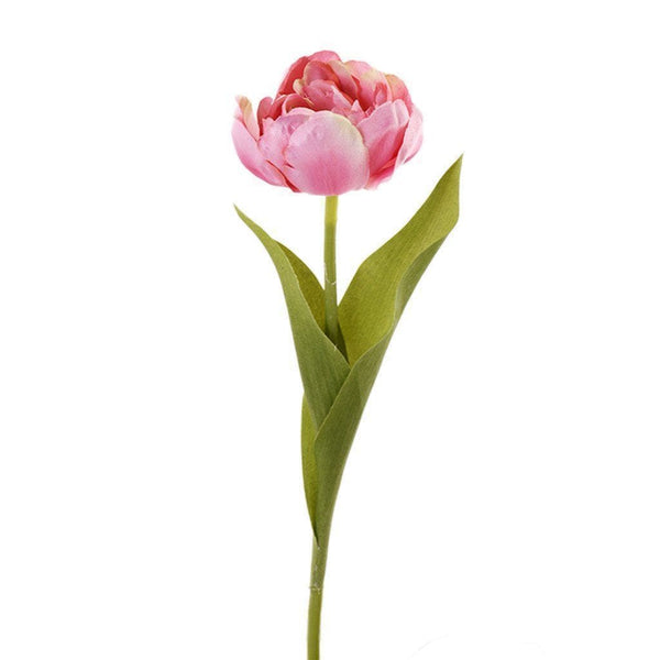a stem of pink tulip 1