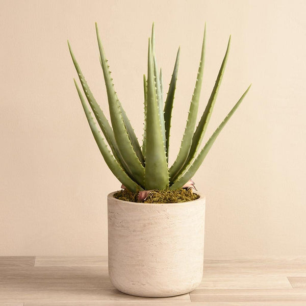 Artificial Potted Aloe - Bloomr