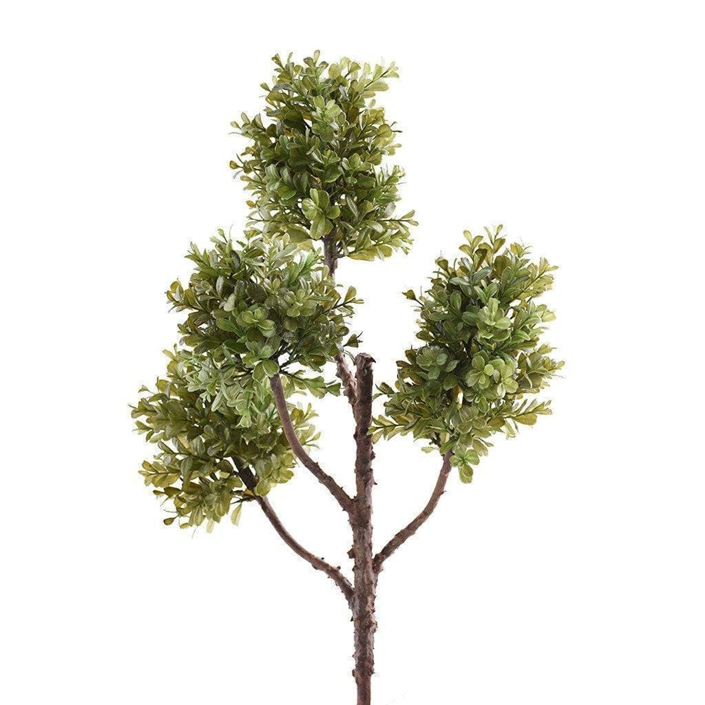 Boxwood Branch Bloomr Home Artificial Flowers and Trees