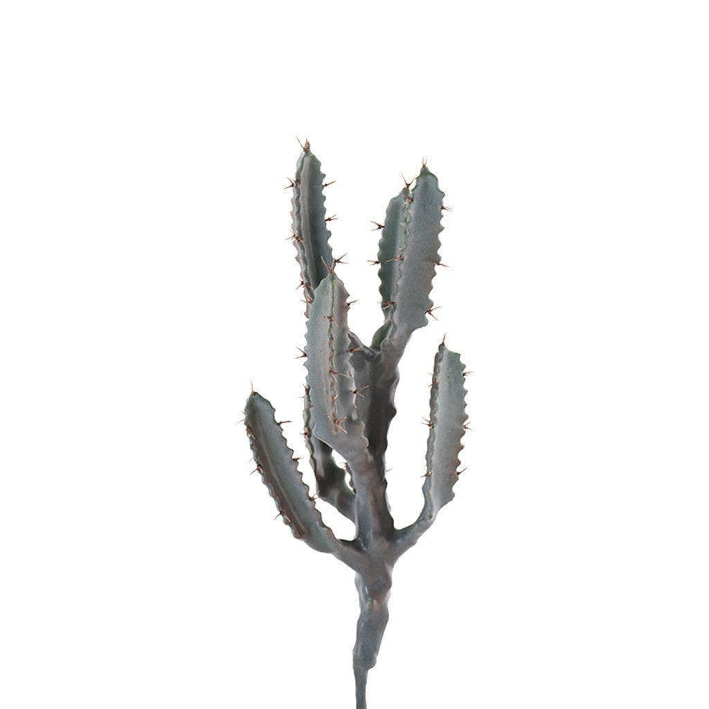 Cactus Bloomr Artificial Flowers & Artificial Trees