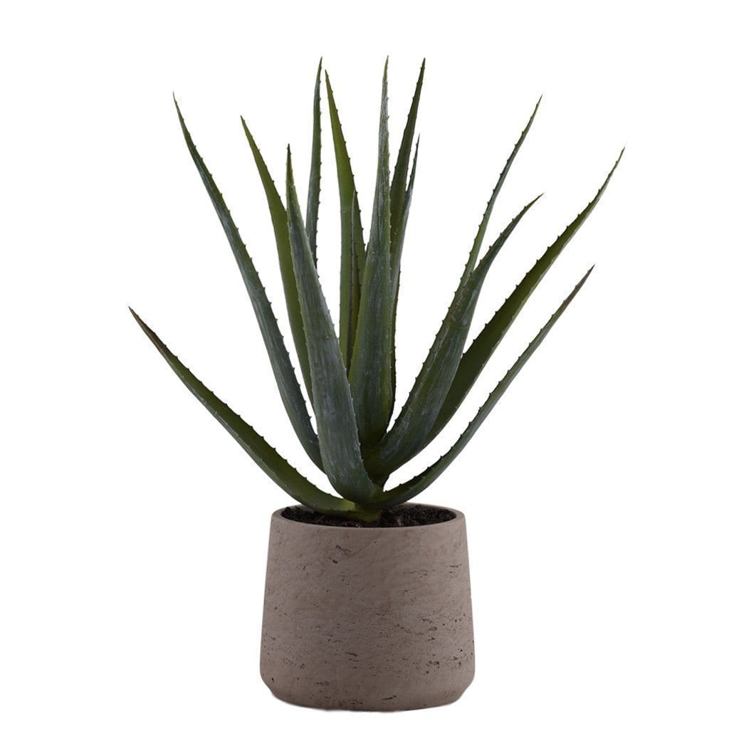 Modern Potted Artificial Aloe Bloomr Artificial Flowers & Artificial Trees