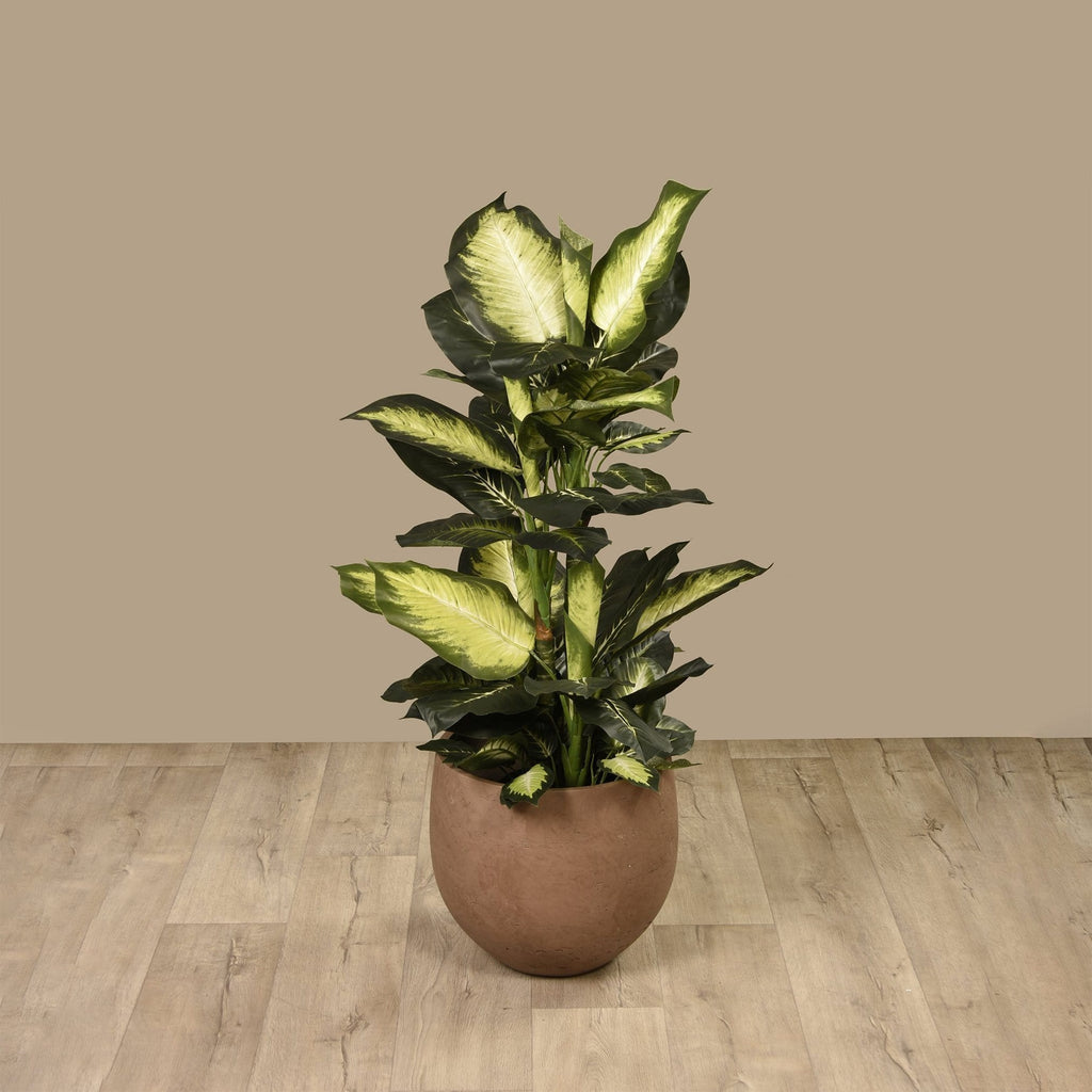 Artificial Diffenbachia Plant Bloomr Artificial Flowers & Artificial Trees