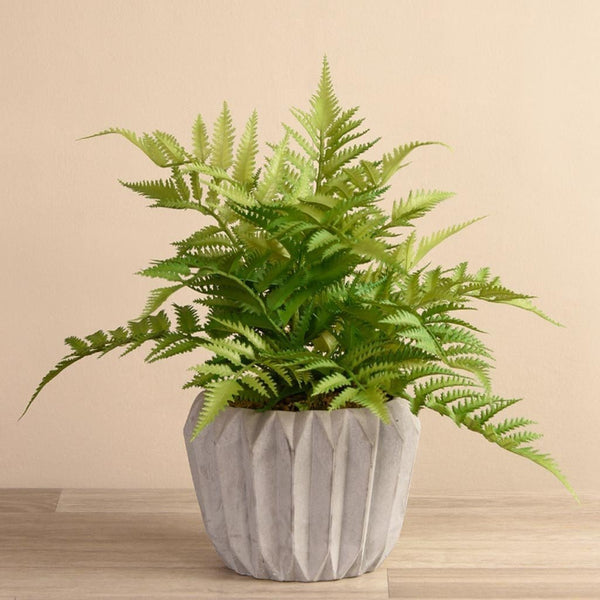 Artificial Fern in Geometric Cement Pot Bloomr Artificial Flowers & Artificial Trees