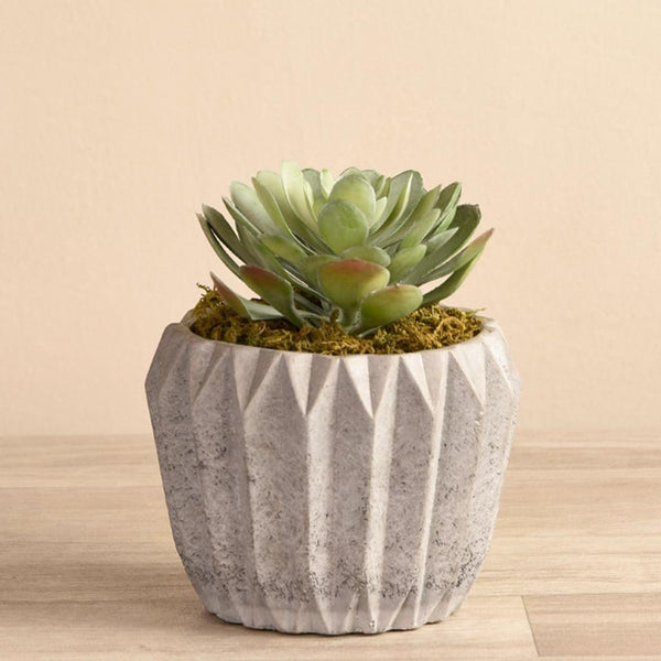 Artificial Succulent in Geometric Cement Pot Bloomr Artificial Flowers & Artificial Trees