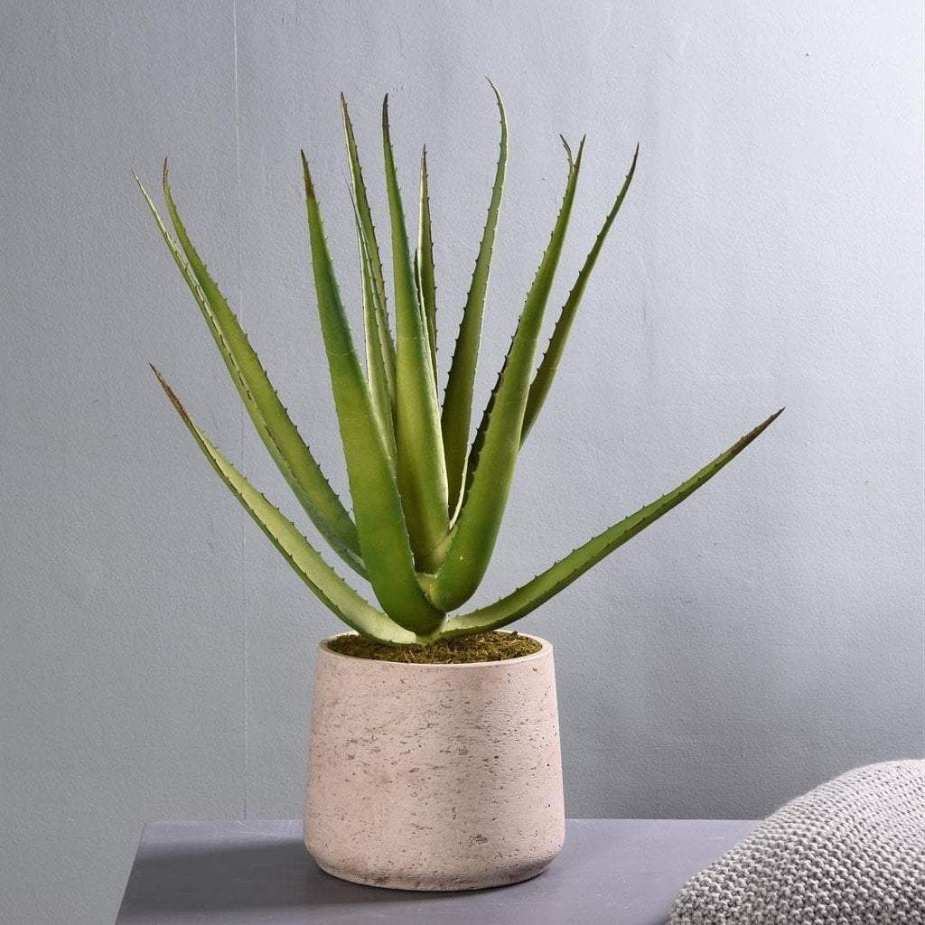 Artificial Aloe Bloomr Artificial Flowers & Artificial Trees