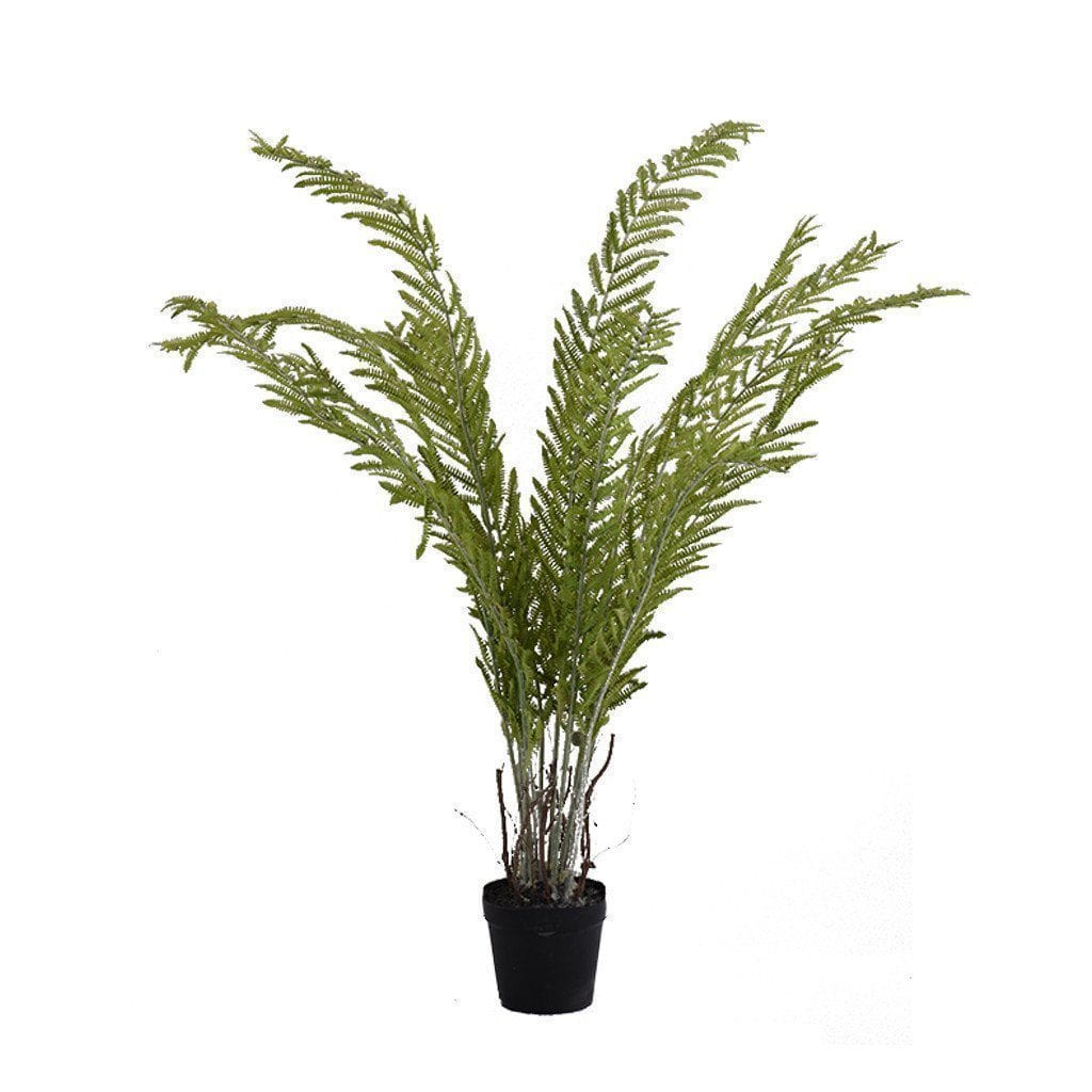 Large Potted Fern Plant Bloomr Artificial Flowers & Artificial Trees
