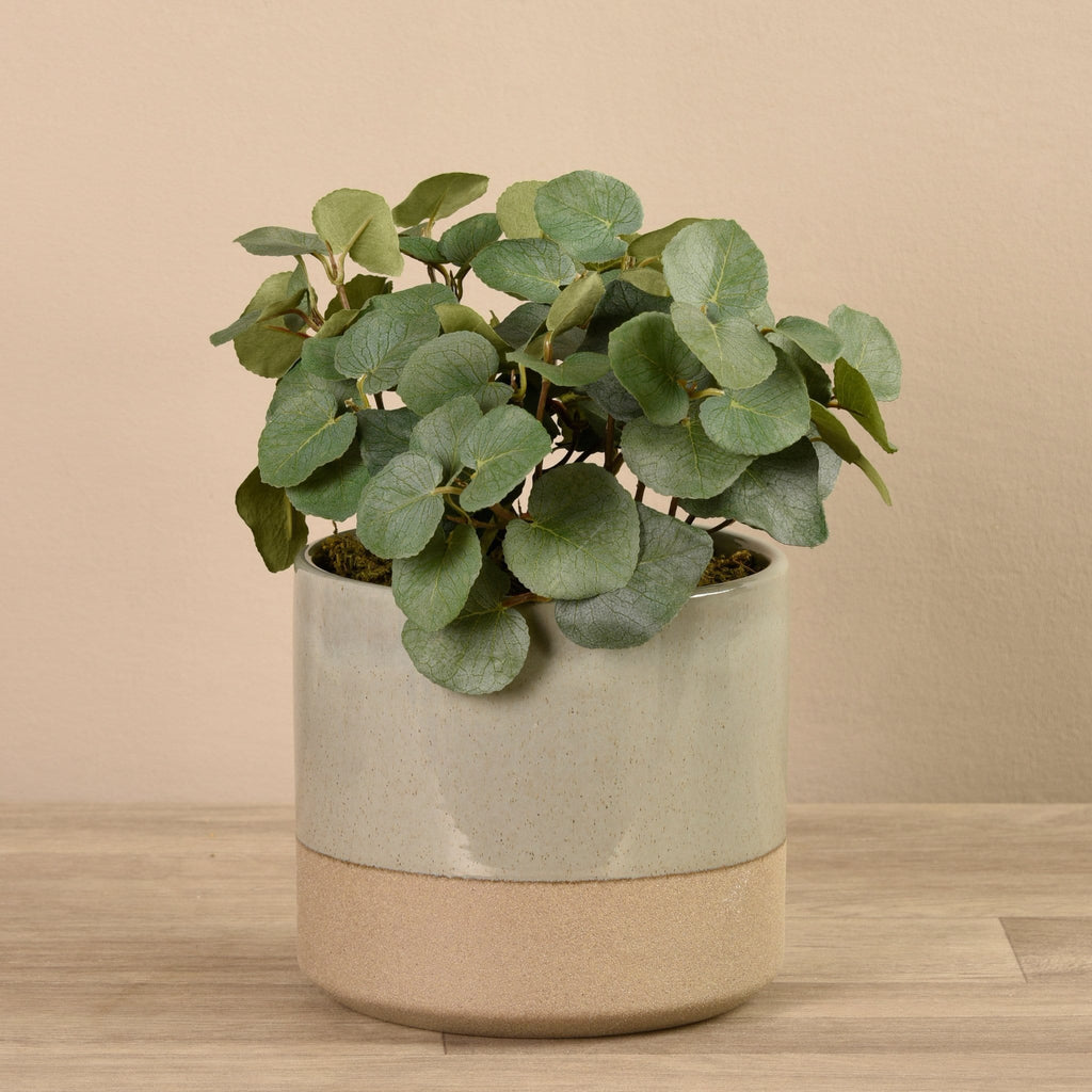 Artificial Eucalyptus Arrangement in Gray Ceramic Pot Bloomr Artificial Flowers & Artificial Trees
