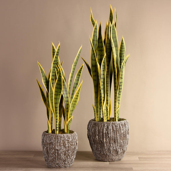 Artificial Potted Snake Plant - Bloomr