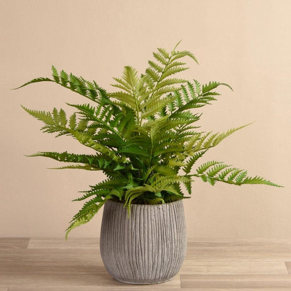 Artificial Fern in Modern Concrete Pot Bloomr Artificial Flowers & Artificial Trees