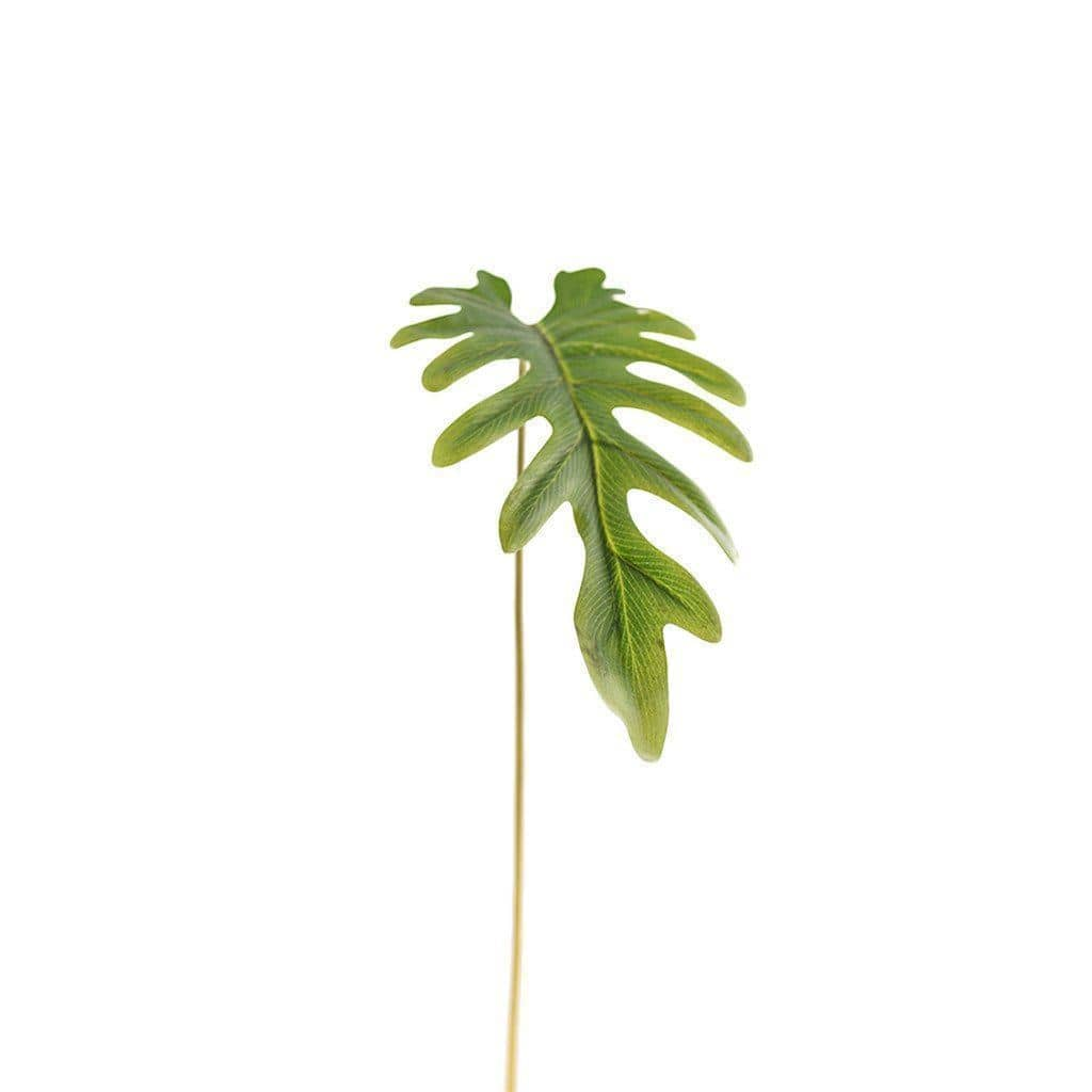 Philodendron Large Bloomr Artificial Flowers & Artificial Trees