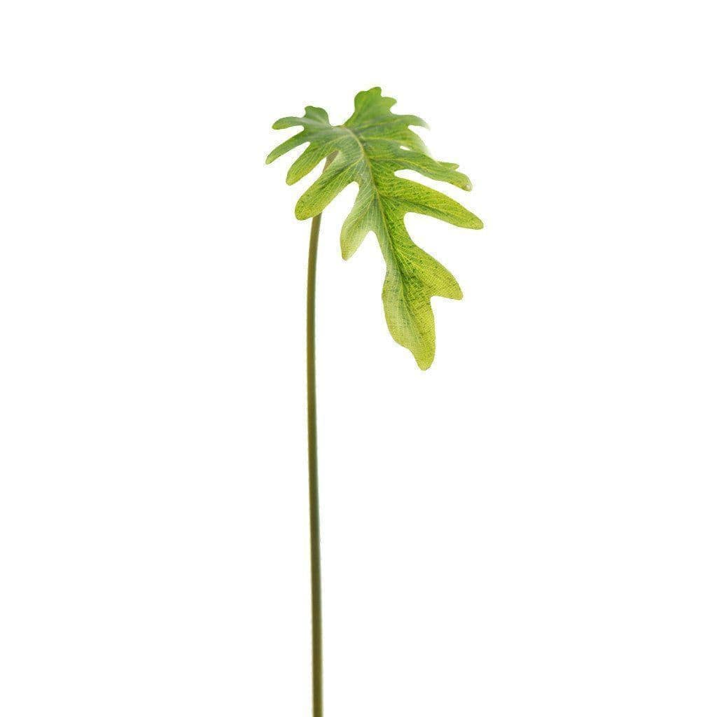 Philodendron Small Bloomr Artificial Flowers & Artificial Trees