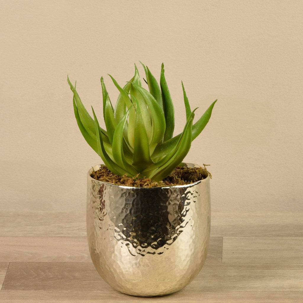 Potted Aloe Bloomr Artificial Flowers & Artificial Trees