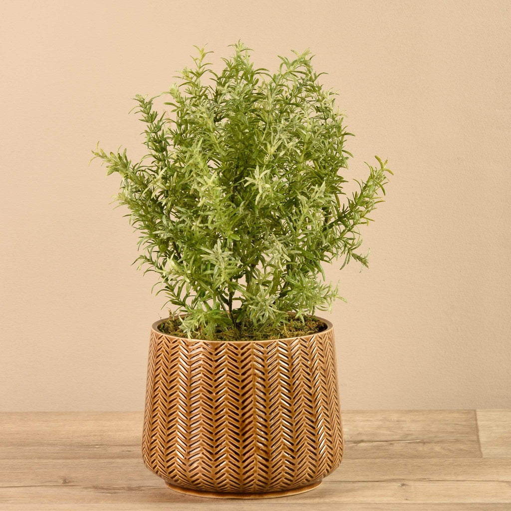 Artificial Potted Asparagus Fern - Bloomr