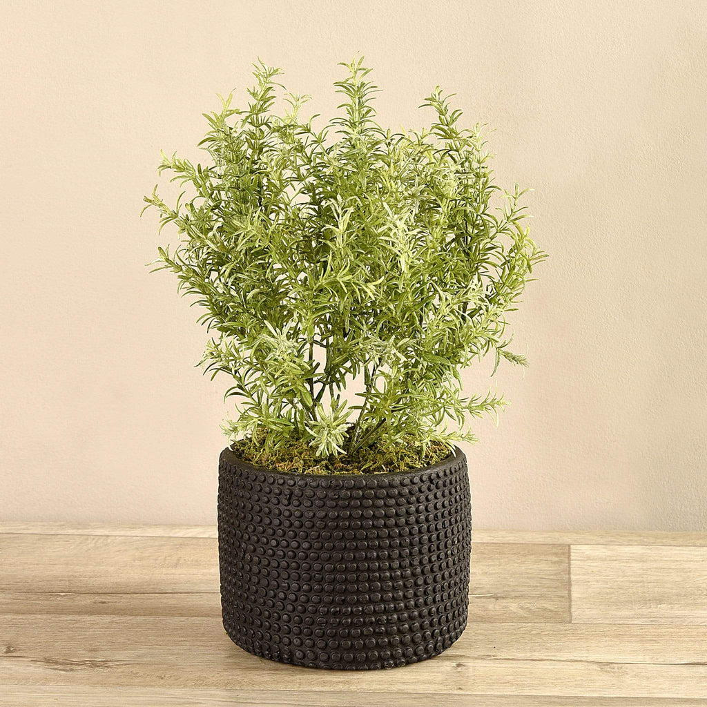 Artificial Potted Asparagus Fern Bloomr Artificial Flowers & Artificial Trees