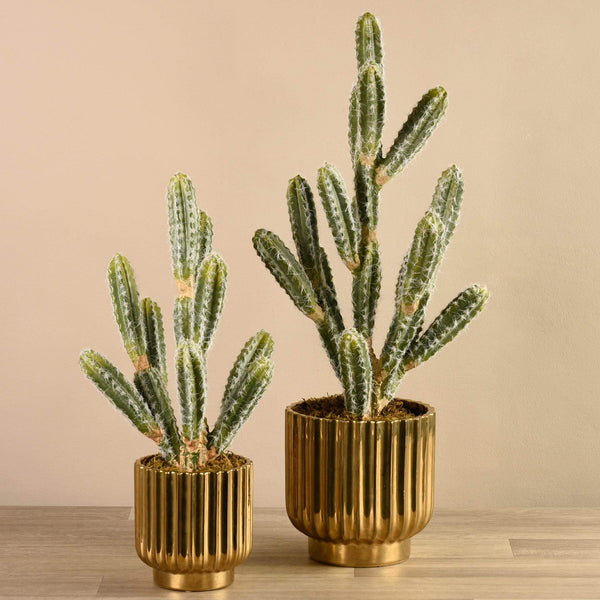 Potted Cactus Bloomr Artificial Flowers & Artificial Trees