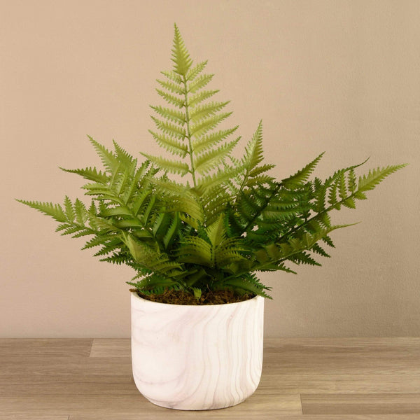 Potted Fern Bloomr Artificial Flowers & Artificial Trees