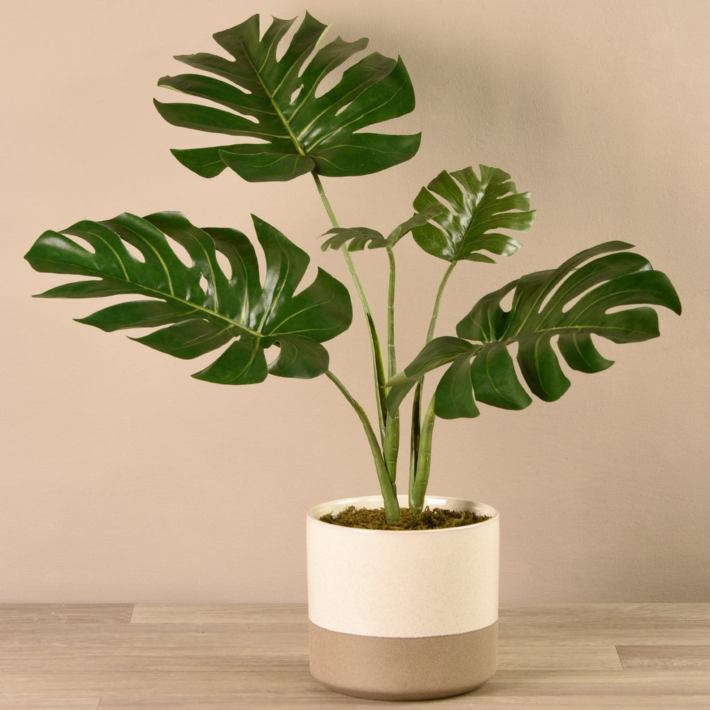 Potted Monstera Plant Bloomr Artificial Flowers & Artificial Trees