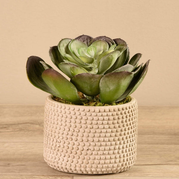 Artificial Potted Succulent Bloomr Artificial Flowers & Artificial Trees