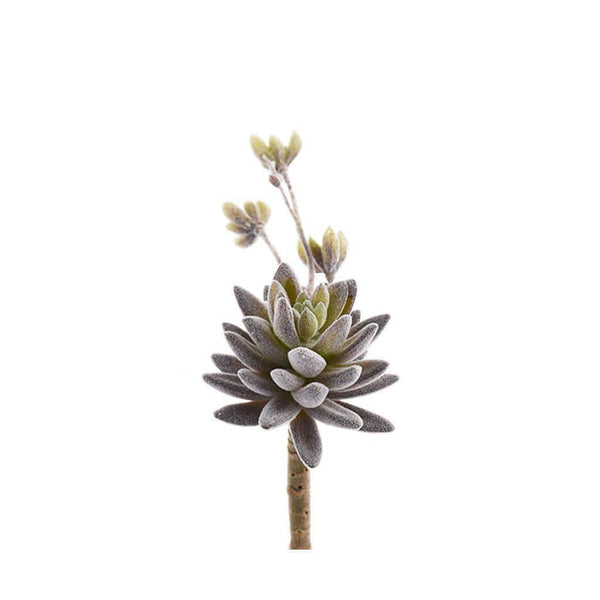 Single Stem Flocking Succulent Bloomr Artificial Flowers & Artificial Trees