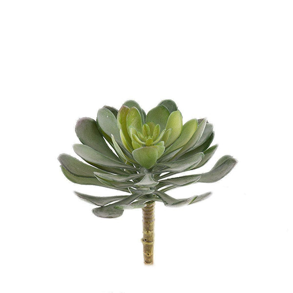 Single Stem Succulent Bloomr Artificial Flowers & Artificial Trees