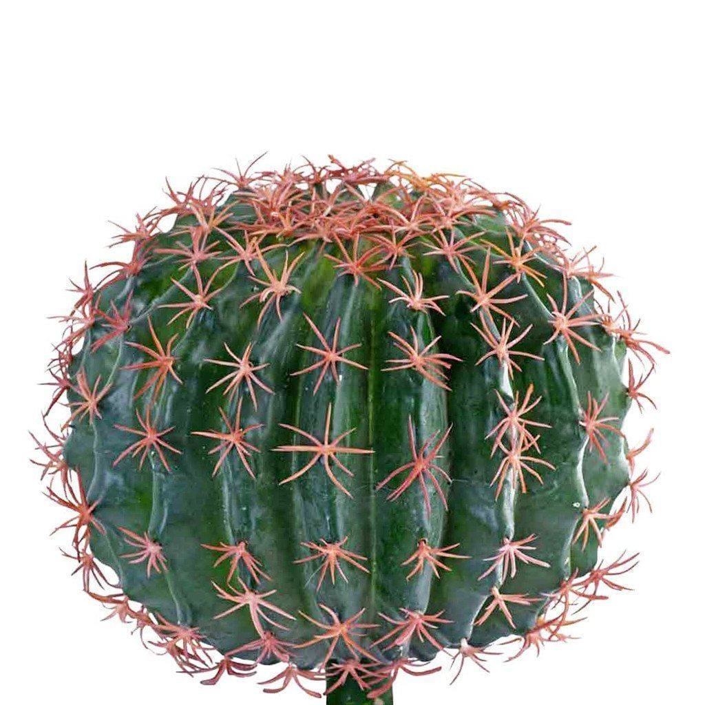 Small Barrel Cactus Bloomr Artificial Flowers & Artificial Trees